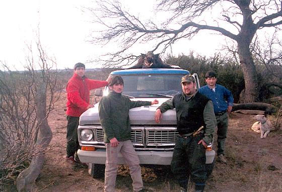 cómo es la caza de jabalí con